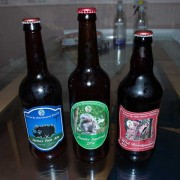 The First Batch Of Beers
